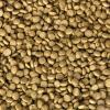 Kanpai excelentní krmivo pro KOI (4kg - 7mm)